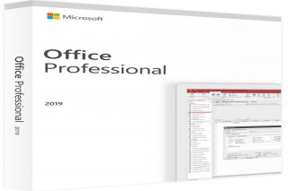 25x Microsoft Office 2019 Professional